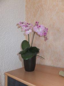 Ferienwohnung Wohnzimmer 07